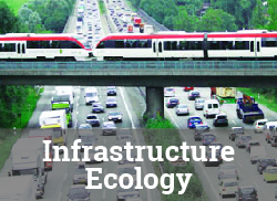 "Image of commuter train overpass over freeway with text overlay, ""Infrastructure Ecology."""